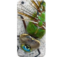 The Story of Beauty iPhone Case/Skin