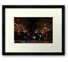 Holiday trees Framed Print
