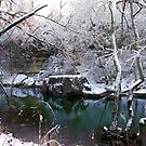 Cherokee Park Big Rock Snow by LizzieMorrison
