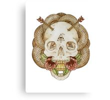 Skulls and Arrows Canvas Print