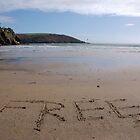 Free word in sand on beach, Salcombe, Devon, United Kingdom by silverportpics