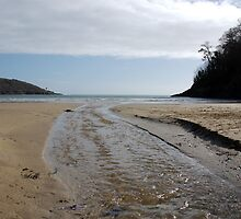 Flowing stream on beach, Salcombe, Devon, United Kingdom by silverportpics