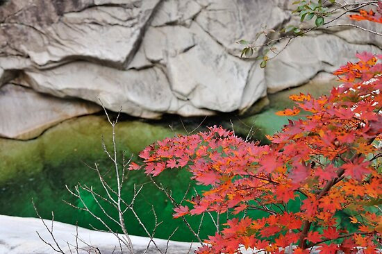 Autumn Colours in Kumgangsan by Kasia Nowak