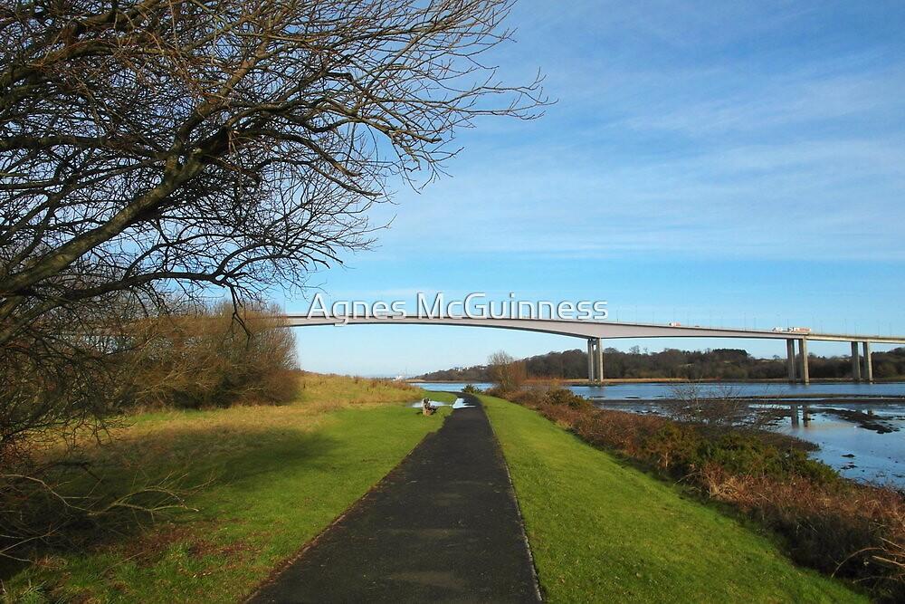 Foyle Bridge, Derry by Agnes McGuinness