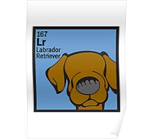 Lab (Chocolate) - The Dog Table Poster