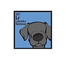 Lab (Black) - The Dog Table Photographic Print