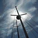 Masts in Sunlight by SlavicaB
