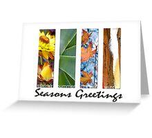 Seasons Greetings (bright) Greeting Card