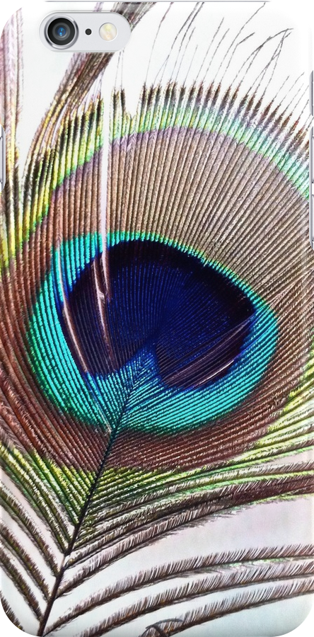 Feather of  a Peacock by lindsycarranza