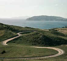 Kapiti from above Titahi Bay NZ 196409100012 by Fred Mitchell