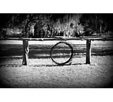 Cattle Ranch Photographic Print