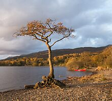 Loch Lomond autumn  by Kay Roxby