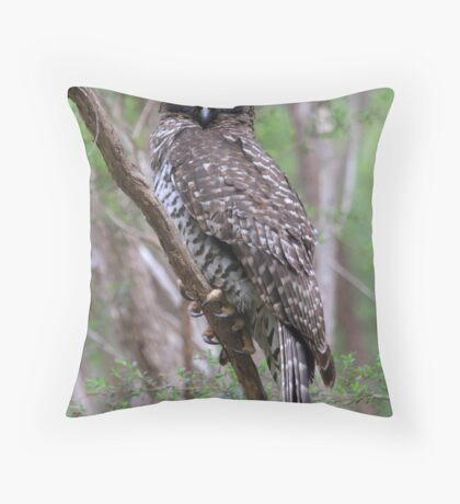 Powerful Owl .Ninox strenua Throw Pillow