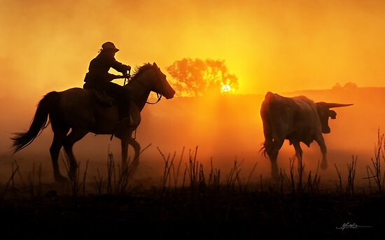 Sunset Muster by Mieke Boynton