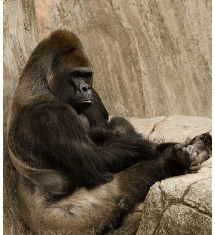 Bored to Death Gorilla  Sticker