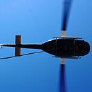 Aerial Work by PrecisionHeli