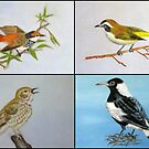 Bird Collage by Denise Martin