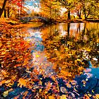 Boston Fall Foliage Reflection by LudaNayvelt