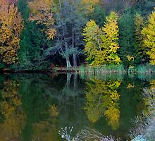 Lakeside Autumn by Gene Walls