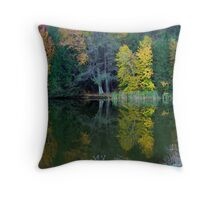 Lakeside Autumn Throw Pillow