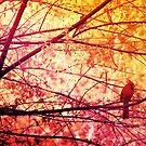 Birdy by Kelsey Williams