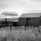 Hut and Cloud Flinders Island by Andrew  Makowiecki