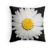 Top View of a White Daisy Isolated on Black Throw Pillow