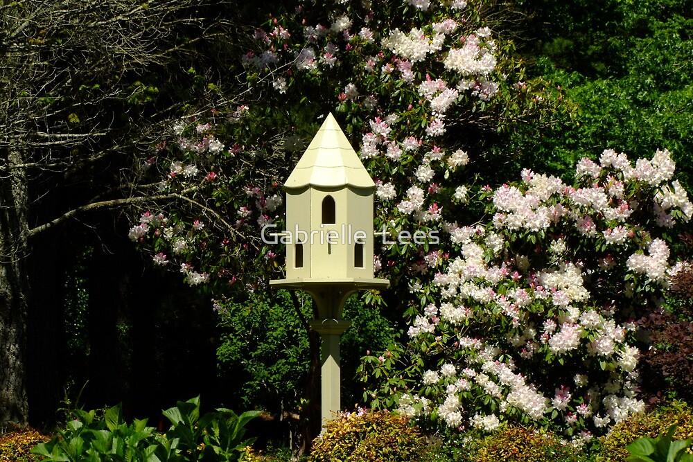 Bebeah Garden, Mt Wilson by Gabrielle  Lees