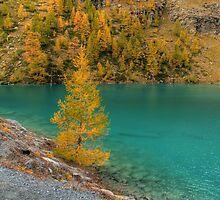 Lago Blu by Gianluca Laurentini