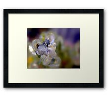 Ice Formation Framed Print