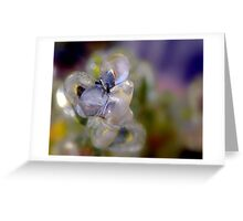 Ice Formation Greeting Card