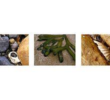 Tassie Beach Scenes by Michelle Ricketts