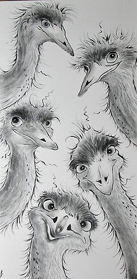 Emu Run! by Sally Ford