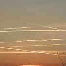 Sunset Lines by Michele Filoscia