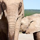 Mother and Baby by Lindsay Basson