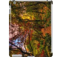 Mount Wilson #2 - IPAD COVER  The HDR Experience iPad Case/Skin