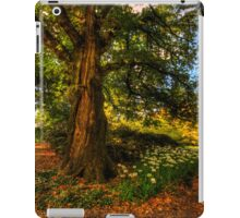 Mount Wilson #1 - IPAD COVER  The HDR Experience iPad Case/Skin