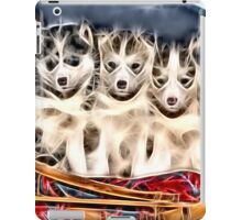 Wild nature - huskies iPad Case/Skin