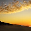 cape conran sunrise by wellman