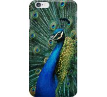 paon iPhone Case/Skin