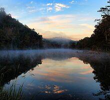 Morning Mist by Carolyn  Fletcher