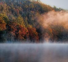 Misty Panorama by Carolyn  Fletcher