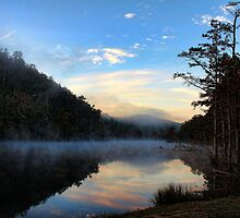 Mist At Sunrise by Carolyn  Fletcher