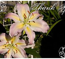 Oriental Lilies by reflector