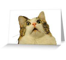 upset cat  Greeting Card