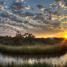 Bend in The Bayou Sunrise by Jonicool