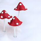 Winter Toadstools by Michaela Sagatova