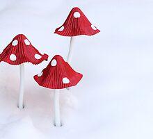 Winter Toadstools by PixlPixi