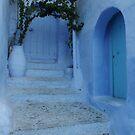 The peaceful doors by monaiman