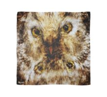 Designs Inspired By Nature: Boreal Owl Scarf